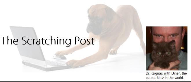 Scratching Post vet blog for Yorkville Animal Hospital